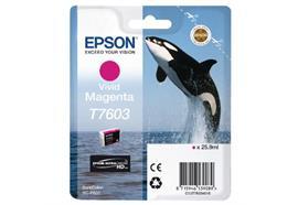 DKP Epson T7603 Tinte C13T76034010 Magenta