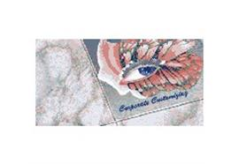 Folex Floor Jet Bodengrafiken/Schilder/Display's