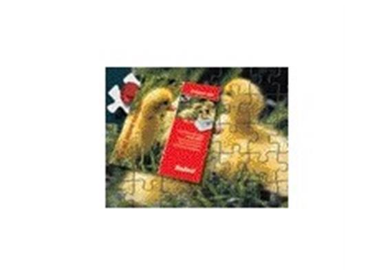 Folex Puzzle Jet 1er A4 2939.4.501